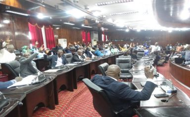 -Big Boost for Journalism in Liberia  -House of Representatives decriminalizes Speech Offenses